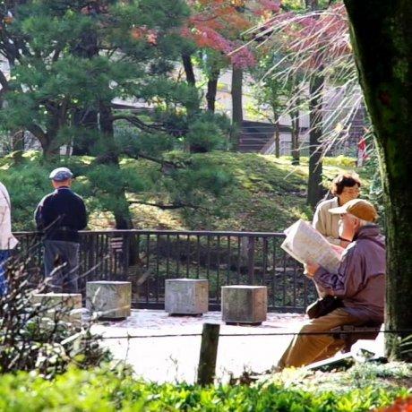 스타디움 옆에 있는 일본식 정원