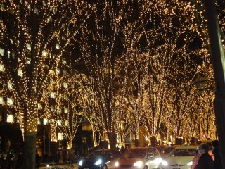 Xem lễ hội ánh sáng tuyệt vời trên Đại lộ Jozenji