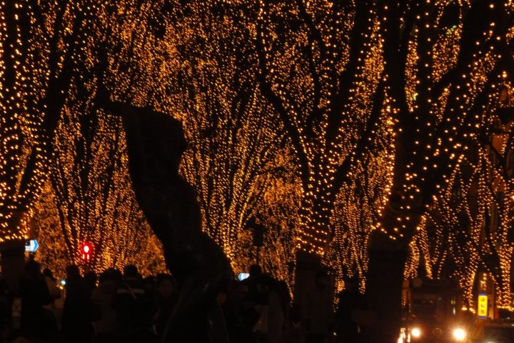Viewing the Sendai Illumination