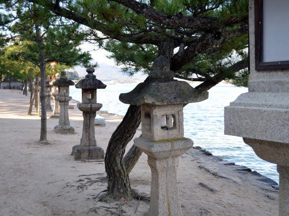 Lentera-lentera batu dan pohon-pohon di pantai