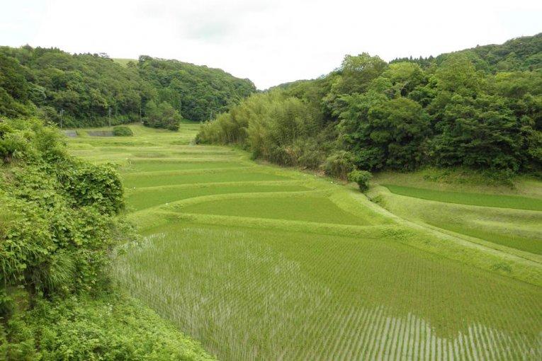 バイクに乗って、千葉の田園風景をゆく
