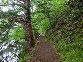 A typical hiking path along Yuno-ko Lake