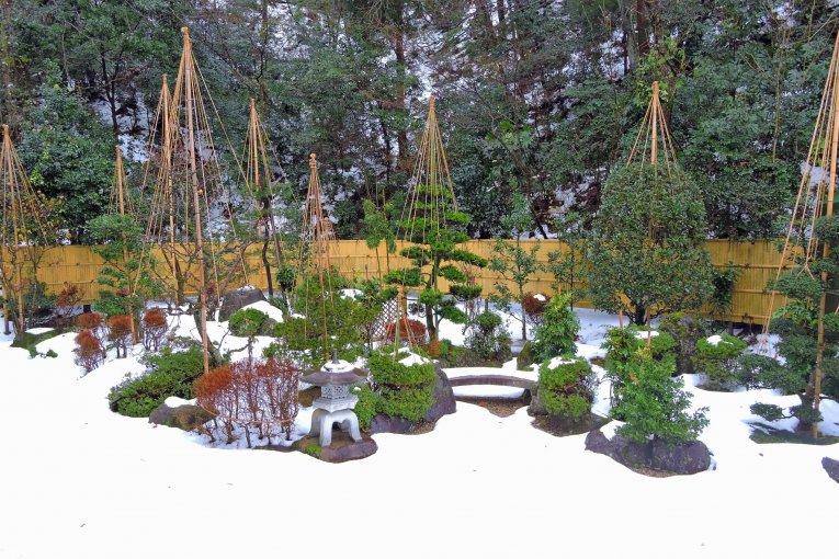 Tuyết trắng ở đền Izumo, tỉnh Fukui