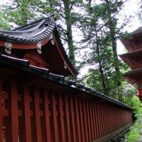 ด้านนอกของศาลเจ้าโทโชกุ ที่นิกโก้