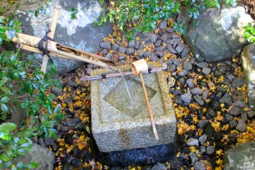 <p>Tsukubai&nbsp;is a&nbsp;stone bowl filled with water to wash hands and rinse mouth, a symbolic ritual of purification</p>