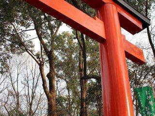 この朱の鳥居をくぐり東に抜けると糺の森から下鴨神社へと続く参道に出る