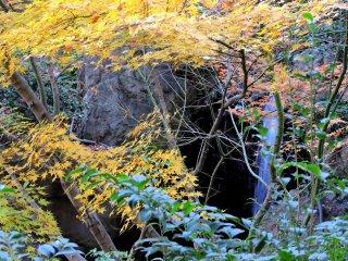 Folhas amarelas e cor-de-laranja em frente a uma pequena cascata