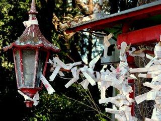 Những lá bùa may mắn được mọi người gắn vào chiếc đèn lồng cũ kĩ