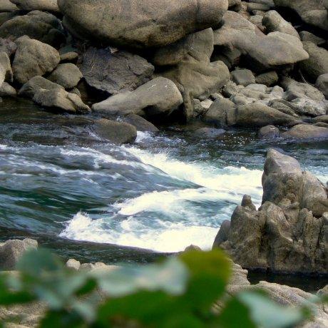 Kaeru-Iwa Rapids trên sông Seta
