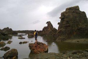 哥斯拉岩石