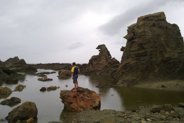 Godzila dan Semenanjung Oga