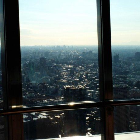 Kegembiraan Tokyo Tower