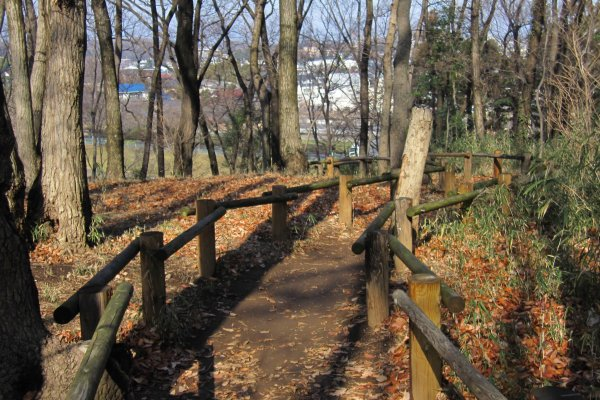 妙音沢まで続く歩道。階段を下りて右手に妙音沢が見えてきます。