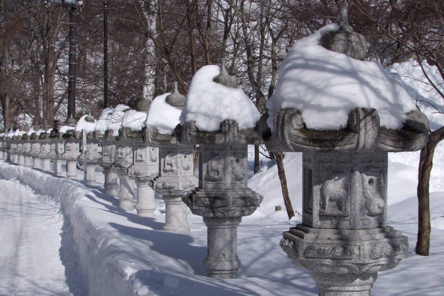 Lanterns poking out from the snow