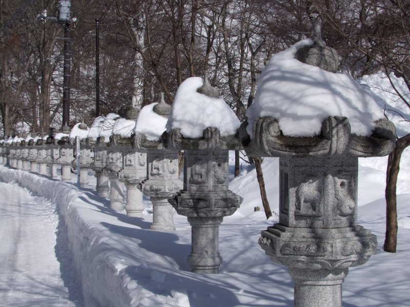 <p>Lanterns poking out from the snow</p>