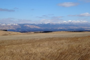 <p>Aso&#39;s&nbsp;fields are golden until the spring planting</p>