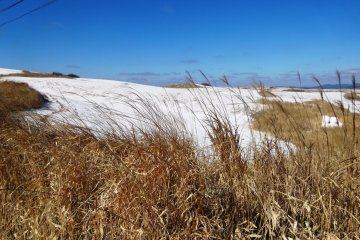 <p>You can often find snow lying up along the Milk Road, as the temperature there is significantly lower than down in the valley</p>