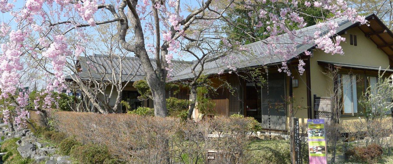 埼玉県神川町にある「紫水庵」。自然の中に佇む和風の一軒家です。