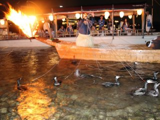 I was lucky enough to witness twice the Japanese traditional method of fishing in Gifu.  This fishing method known as cormorant fishing or ukai has been around for 1300 years.  The whole experience is very interesting as it is one-of-its kind.  On top of