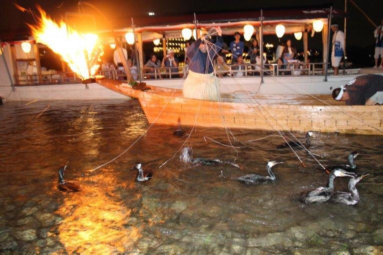 Cormorant Fishing in Nagara River