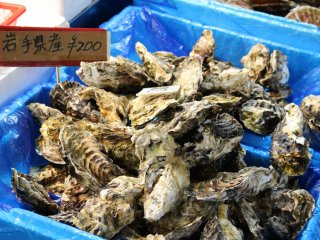 Iwate oysters