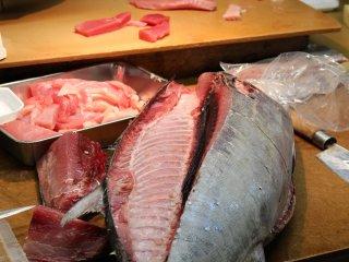 鮪魚準備中