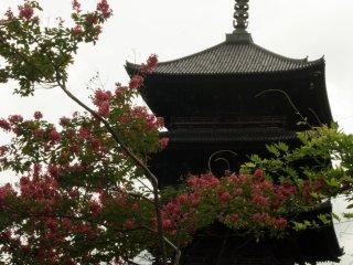 The pagoda ofToji Shrine