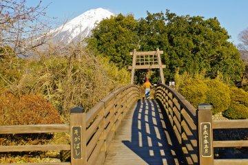 <p>Soga Bridge runs across the Shibakawa River, just before Otodome&nbsp;Falls.</p>