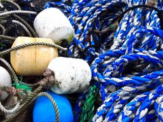 Vivid blue rope along the shore.