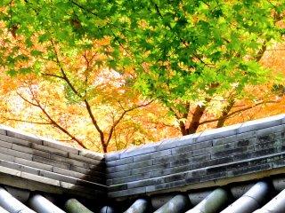 門塀の屋根瓦