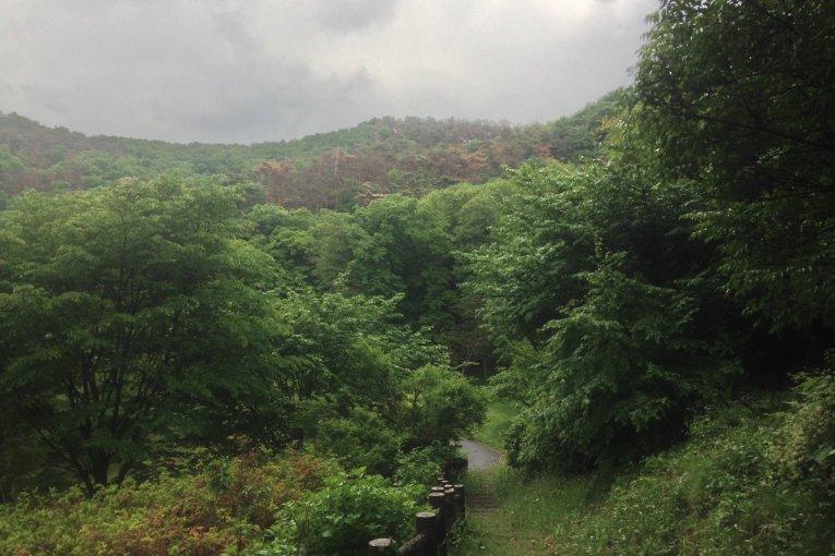 Sano's Mikamoyama Park
