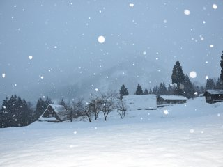 After 5 p.m. snow fell continuously! I felt like I was looking at a scene in a fairy tale.