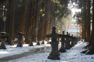 The approach to the shrine is lined with stone lanterns.