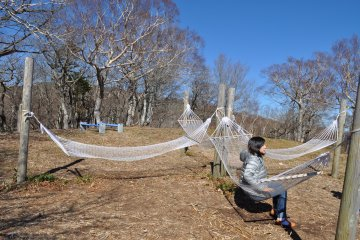 <p>Relaxing in hammocks put out for visitors to enjoy</p>