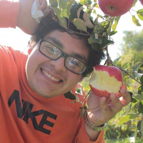 Những quả táo kì diệu ở Aomori