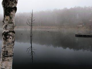女神湖の朝靄の中!さすがに朝は冷え込む