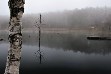 <p>Lake Megami was enveloped in morning mist. It was freezing cold in the early morning!</p>