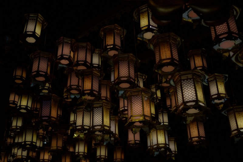<p>A lot of lanterns hang from the ceiling of Hondo</p>