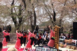 The fluid movements of the dance troupe at the Kakunodate Festival.