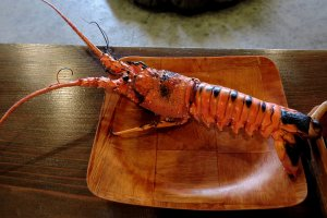 Delicious spiny lobster