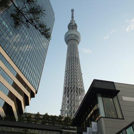 ไปเที่ยว Tokyo Skytree กันไหม?