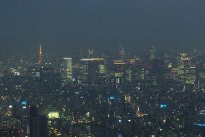 มองเห็นโตเกียวทาวเวอร์ไกลๆในยามค่ำคืน