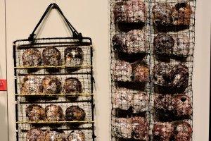 Сетки-ячейки, заполненные моллюсками