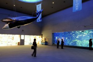 A scale model of a whale is suspended over the entrance area