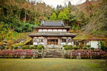 Kanagawa's Saisoji Temple