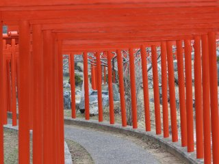 This is the entrance of the 201 red torii gates that are supposed to represent a dragon. After you walk through the belly of the dragon, you reach the retired foxes.