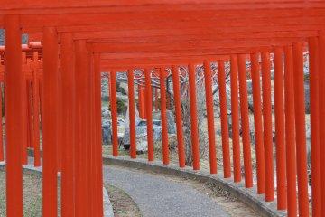 이곳은 용을 상징하는 201개의 빨간 토리 문 입구다. 용의 배를 거쳐서 걸으면 '은퇴'한 여우에 이른다.