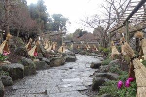 สวนดอกโบตั๋นที่ศาลเจ้าซึรุกะโอะกะ ฮะชิมันกุ