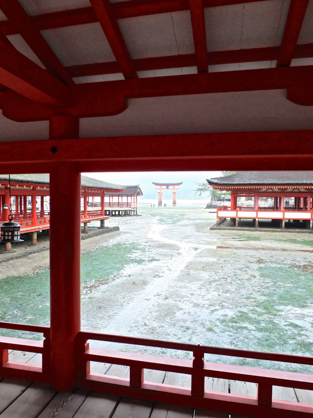 A view of Miyajima's famous torii gate in the far distance