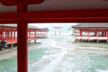 <p>A view of Miyajima&#39;s famous torii gate in the far distance</p>